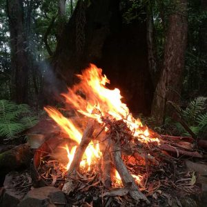 fire-springbrook-mountain-1.jpg