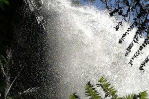 waterfall-springbrook-3.jpg