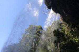 waterfall-springbrook-9.jpg
